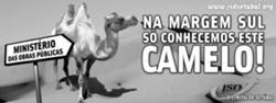 Na margem sul só conhecemos este CAMELO!